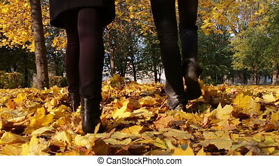 Young man and girl walking in the autumn park holding hands...
