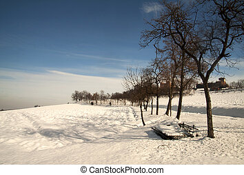 Snowscape - Landscape of a snow covered hill with naked...