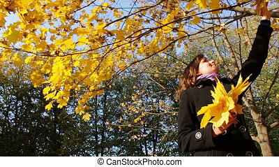 A girl throws yellow leaves from the tree branches of trees...