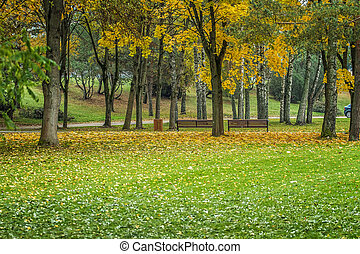 Park in Birstonas - Lithuanian landscape come the fall when...