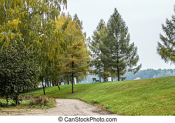 trees near road - Lithuanian landscape come the fall when...