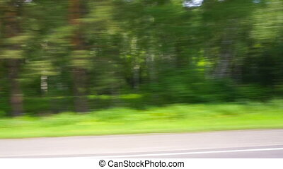 View of summer forest from moving car - View o summer forest...