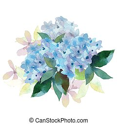 Illustration of Hydrangea flowers - Watercolor style vector...