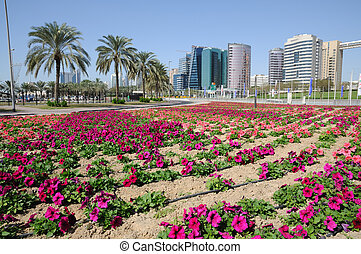 Flowers in Dubai City, United Arab Emirates