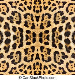 Leopardo, piel, textura, para, Plano de fondo,