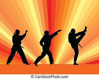 Taekwondo, práctica