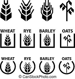 wheat rye barley oat cereal spike ears symbols -...