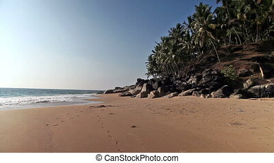 The seashore with palm trees. India. Kerala. Landscape in a...