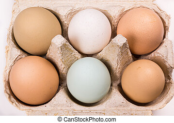 six eggs in different colors and sizes in an egg box -...