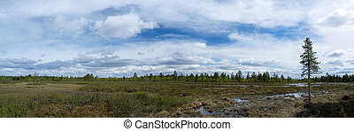Wide Land in Finland - Landscape in the north of Finland,...
