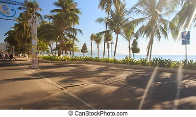 camera moves past embankment large palms by azure sea -...