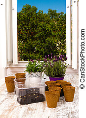Planting flowers - Planting flowers and vegetables at home...