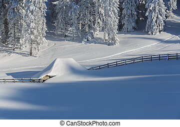 Snowbound - Peaceful alpine wintry scenery with snowbound...