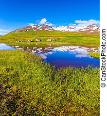 Blue lake water reflects snow in summer Iceland. - Summer...