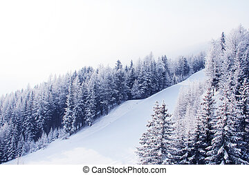 Ski slope - Beautiful winter landscape with ski slope in...