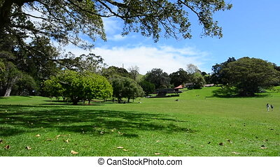 Cornwall park Auckland New Zealand - Landscape of Cornwall...