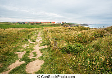 Path to Cran aux OElig;ufs near Cap Griz Nez - Path to Cran...