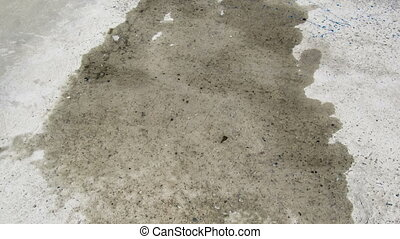 Puddle dries up on the pavement - Water evaporates from...