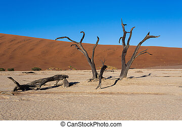 beautiful landscape of Hidden Vlei in Namib desert panorama...