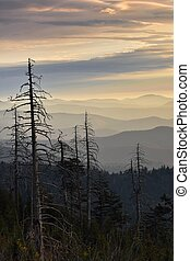 Lines of the Smokies - Ariel view of sunrise showing the...
