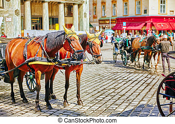 Carriage horses walking in the streets of one of the most...
