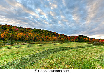 Fall Foliage Vermont - Peak fall foliage in Vermont against...