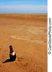 bottle in the sand