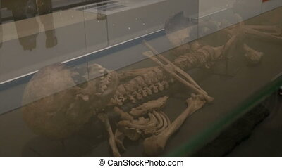 Ancient Skeleton Exposed - Very old human skeleton exposed...