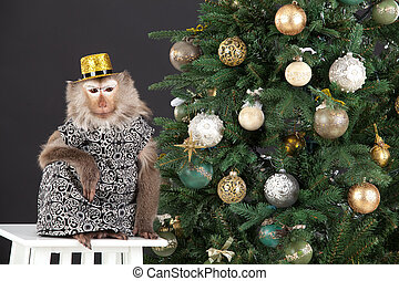Little Monkey And The New Year's Tree - Little monkey...