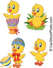 Cute funny baby chicken with Easter