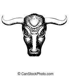 bull on white background - Freehand illustration of bull on...