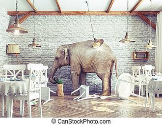 wewnętrzny, słoń, spokój, restauracja