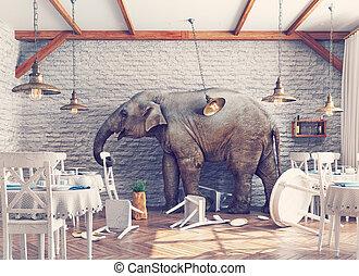 słoń, restauracja