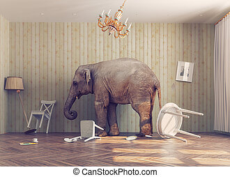 a elephant in a room - a elephant calm in a room. photo...