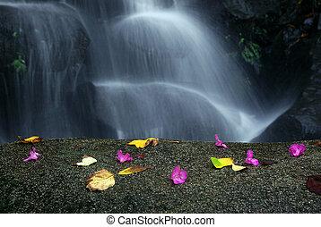 Idyllic Waterfall