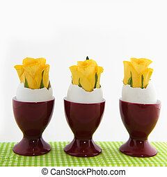 Easter flowers - Yellow easter flowers in egg cups isolated...