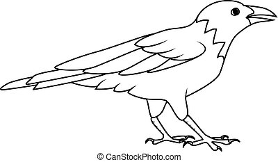Coloring book: Crow or Raven