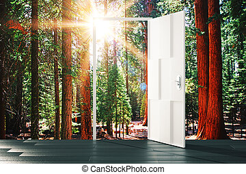 Open door to the sunny forest concept