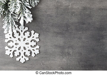 Fir tree - Fir tree covered with snow on gray board
