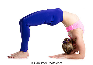 Bridge pose on elbows - Sporty beautiful young blond woman...