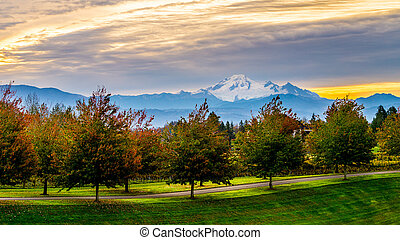 Sunrise over Mount Baker and a tree lined lane in the Fraser...