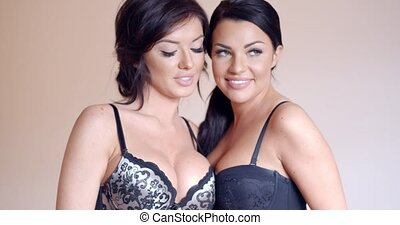 Two attractive busty women in lingerie - Two attractive...