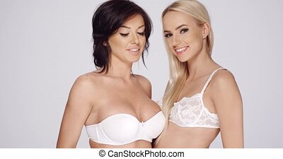 Two attractive sexy lingerie models wearing different styles...