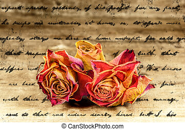 poetry - faded roses  on letter texture