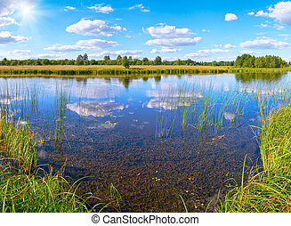 Summer rushy lake view with clouds reflections and sunshine...