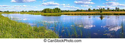 Summer rushy lake panorama view with clouds reflections