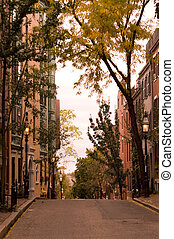 Beacon Hill in Boston with Row of Trees