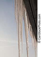 icicles - Icicle hanging from the roof