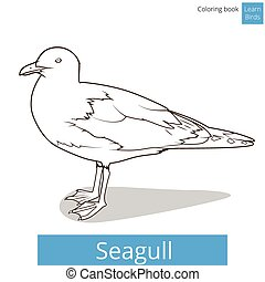 Seagull learn birds coloring book vector - Seagull learn...