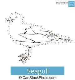 Seagull bird learn to draw vector - Seagull learn birds...